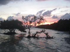 A Florida Keys sunset.