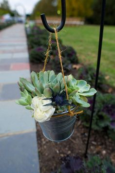 succulents in a galvanized bucket hanging via shepherds hook