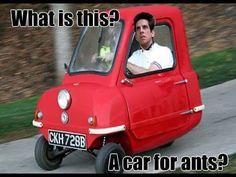 Car ants speed