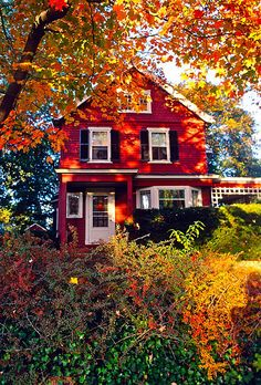 I love red houses, particularly in the fall. Future House, My House, Farm House, Bungalow, Beautiful Homes, Beautiful Places, Beautiful Farm, Red Houses, Yellow Houses