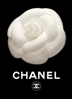 Nida 3d Name Wallpaper Coco Chanel Logo Luxury Lifestyle Pinterest Chanel