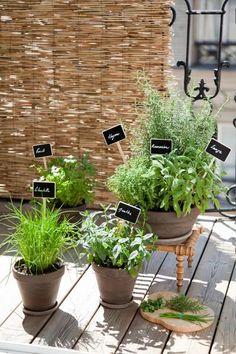 Comment planter des herbes aromatiques sur son balcon ou sa terrasse - By Coté Maison