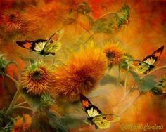 Carol Cavalaris - butterflies