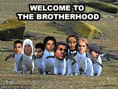 BROTHERHOOT
