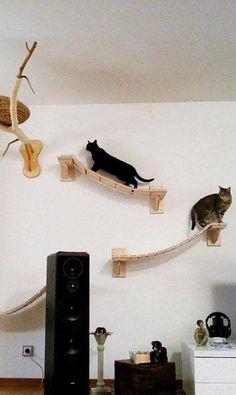 92 Desain Kandang Kucing Tingkat dari Kayu, Besi, dan Alumunium