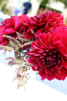 red dahlias with lavender?