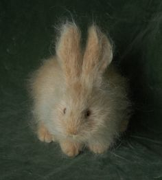Natasha Fadeeva felted animals - Fluffy rabbit