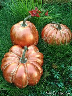 Learn how to make copper pumpkins with metallic paint, and enjoy your on-trend pumpkins throughout the Fall season! Copper pumpkins -- especially ones that look a bit rustic -- are easy to create! Metal Pumpkins, Glass Pumpkins, Painted Pumpkins, Fall Pumpkins, Halloween Pumpkins, Fall Halloween, Halloween Crafts, Halloween Ideas, Happy Halloween