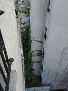 #paris#belleville