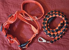 Heather Speaks Out: Segarty Dog Leash Harness & Collar Set Review
