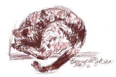 Daily Sketch: Kitty's Sleeping