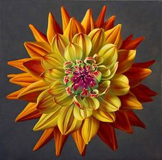 Jane Willis Taylor :: Confetti Dahlia, oil on canvas