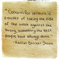 """Concern for animals is a matter of taking the side of the weak against the strong, something the best people have always done.""  Harriet Beecher Stowe"