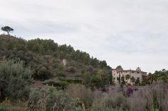 The Spotting Eye: Rural Spain: Son Bleda, Sòller, Mallorca (#2)