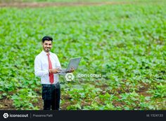 Indian agronomist at cotton field Photo Vector Icons, Vector Free, Agriculture Photos, Cotton Fields, 3d Assets, Icon Pack, Model Release, Photo Illustration, Photoshop