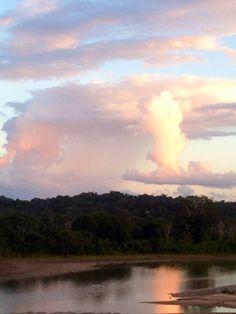 Amazon Basin, Ecuador