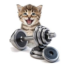 Muskelkater Angst, Gym Equipment, Sport, Motivation, Sore Muscles, Muscle Up, Deporte, Sports, Workout Equipment