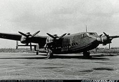 Avro 685 York aircraft picture