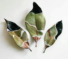 Painted Dried Magnolia Leaves by Samantha Dion BakerIt's been a little while since I've shared my leaves. Last night I paint… It's been a little while since I've shared my leaves. Last night I painted this trio of dried magnolia leaves while we played a Ceramic Pottery, Ceramic Art, Deco Nature, Painted Leaves, Painting On Leaves, Leaf Paintings, Magnolia Leaves, Leaf Crafts, Nature Crafts