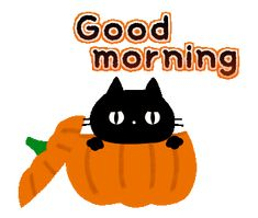 Good Morning Sunday Images, Good Morning Gif, Good Morning Picture, Good Morning Greetings, Morning Pictures, Good Morning Quotes, Happy Halloween Gif, Snoopy Halloween, Halloween Quotes