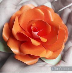 A rózsa talán az egyetlen olyan virág, amelyet ha papírból akarunk elkészíteni, szinte végtelen sok variáció közül választhatunk. A mai...
