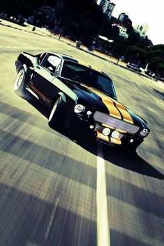 i1967 - Shelby Mustang GT500