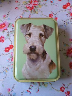 My two big weaknesses join forces- Fox Terriers and biscuits. Resistance is useless, Steve !