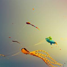 Colourful kites.