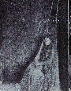 Madame Desperanza, turn-of-the-last-century psychic