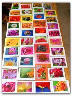 Greeting Cards by Marina Castillo