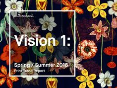 vision-one-ss18-print-trend-report_1-1
