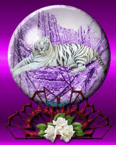 Tiger Snowglobe