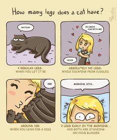 The one about relativity   Catsu The Cat