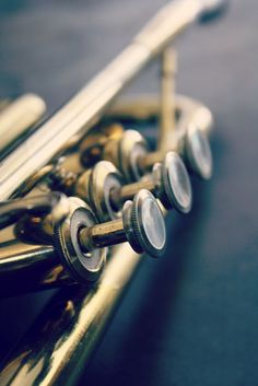 Vintage Selmer K-Modified Trumpet - music to my ears Music Is Life, New Music, Jazz Music, Trumpet Instrument, Half Elf, Trumpet Music, Trumpet Players, Jazz Art, Music Aesthetic
