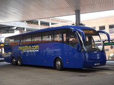 Norwich Buses Blog: Interesting visitor on the M37