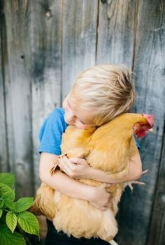 A boy & his chicken