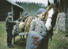 Copyright © 2004-2005 Lotta Svärd Säätiö - Film Finland, Wwii, Movie Stars, Norway, Nostalgia, Tv, Movies, Birches, Seas