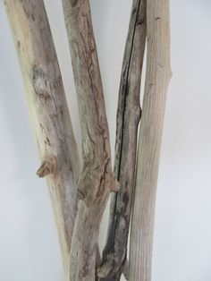 Wall hanging decor - 4 long driftwood branches for driftwood wall art by LonelyBeach on Etsy