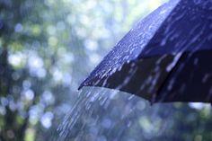 Buon pomeriggio! Dopo l'ultimo episodio: Oggetti nel quotidiano 7 Alla sera e alla mattina chi mi avrà citato per prima? Ho deciso di pubblicare un nuovo articolo! Let's go! Piove piove…