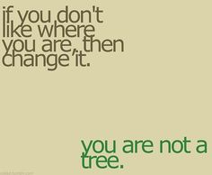 You are not a tree. So funny. But true.
