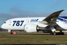 All Nippon Airways (ANA) Boeing 787-8 Dreamliner