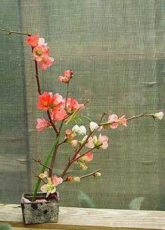 Google Image Result for http://flowerhistory.files.wordpress.com/2009/02/japanese-flower-arrangements.jpg%3Fw%3D450