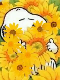 Saying Snoopy & Charlie Brown Good Morning Snoopy, Good Morning Gif, Good Morning Greetings, Morning Images, Good Morning Quotes, Monday Morning, Charlie Brown Quotes, Charlie Brown And Snoopy, Snoopy Videos