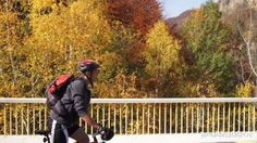 O tura pe biciclete admirand culorile toamnei. Am pornit din Curtea de Arges si am urcat la barajul Vidraru. A urmat un drum cu peripetii pana in Bradetu...