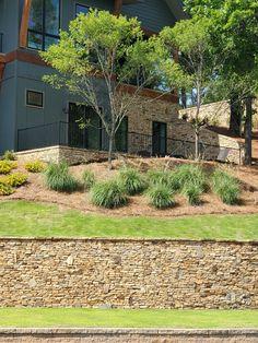 Exterior, Patio, Outdoor Decor, Plants, Home Decor, Decoration Home, Room Decor, Plant, Outdoor Rooms