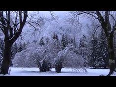 Asher Quinn (Asha) ~ 'Free yourself' (featuring Susanna; November edition)