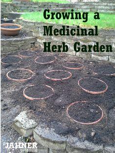 Growing a Medicinal Herb Garden