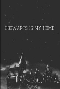 Love Harry Potter ❤️❤️❤️❤️❤️❤️❤️⚡️⚡️⚡️⚡️⚡️⚡️