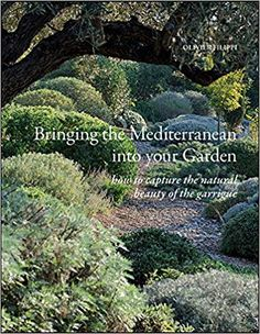 Bringing the Mediterranean Into Your Garden: How to Capture the Natural Beauty of the Mediterranean Garrigue Garden Hoe, Dry Garden, Mediterranean Garden, Drought Tolerant Plants, Plant Design, Travelogue, Amazing Photography, Natural Beauty, Bring It On