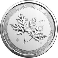 The 2017 Canadian Maple Leaf 10oz Silver coin is the latest in the Maple Leaf range from the Royal Canadian Mint. The reverse of each coin depicts a beautiful engraved maple leaf and the 2017 year denomination. Also shown on the coin is the weight and fineness.  The obverse of each coin bears the effigy of Her Majesty Queen Elizabeth II.  Each coin weighs 311.035g and is 999.0 Fine Silver Minted and supplied by The Royal Canadian Mint. Finished to bullion standard. Dimensions: Diameter…